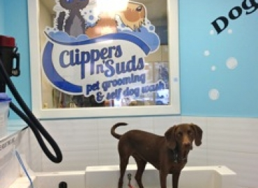 Clippers n' Suds Mascot