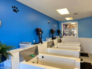 Clippers n Suds Pet Grooming and Self Dog Wash